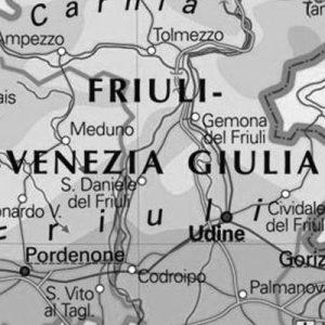 Il lavoro domestico in Friuli Venezia Giulia, dati DOMINA